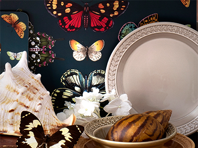 Mixed image of the new Botanic Garden Collection with vintage jugs, prints and botanicals