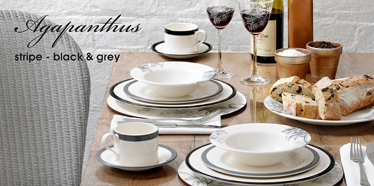 Agapanthus Stripe Grey