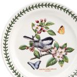 Botanic Garden Birds